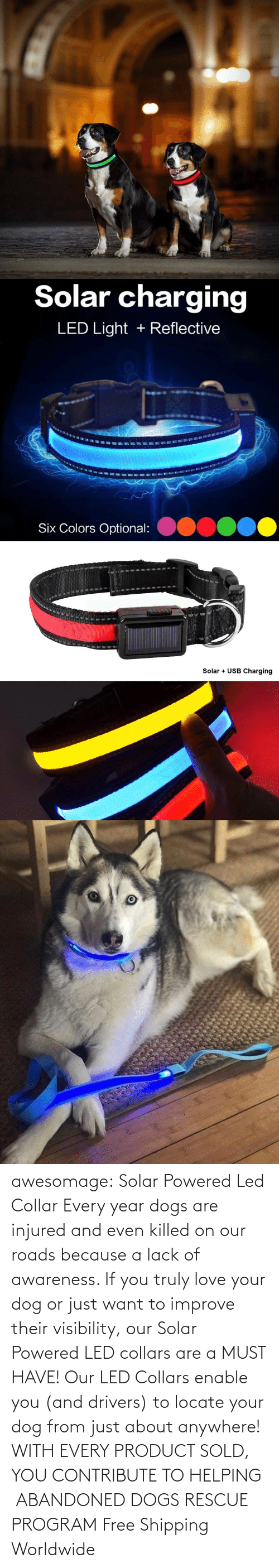 drivers: awesomage: Solar Powered Led Collar   Every year dogs are injured and even killed on our roads because a lack of awareness. If you truly love your dog or just want to improve their visibility, our Solar Powered LED collars are a MUST HAVE!   Our LED Collars enable you (and drivers) to locate your dog from just about anywhere!     WITH EVERY PRODUCT SOLD, YOU CONTRIBUTE TO HELPING  ABANDONED DOGS RESCUE PROGRAM     Free Shipping Worldwide