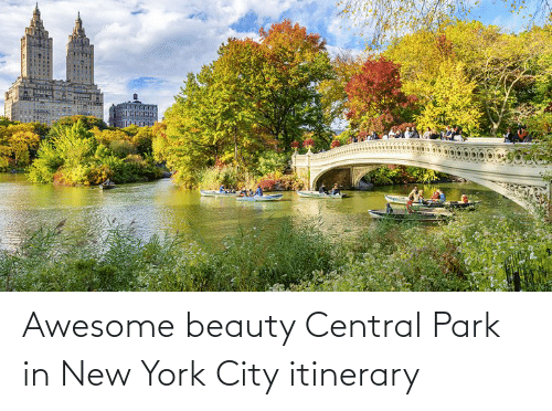 in-new-york-city: Awesome beauty Central Park in New York City itinerary
