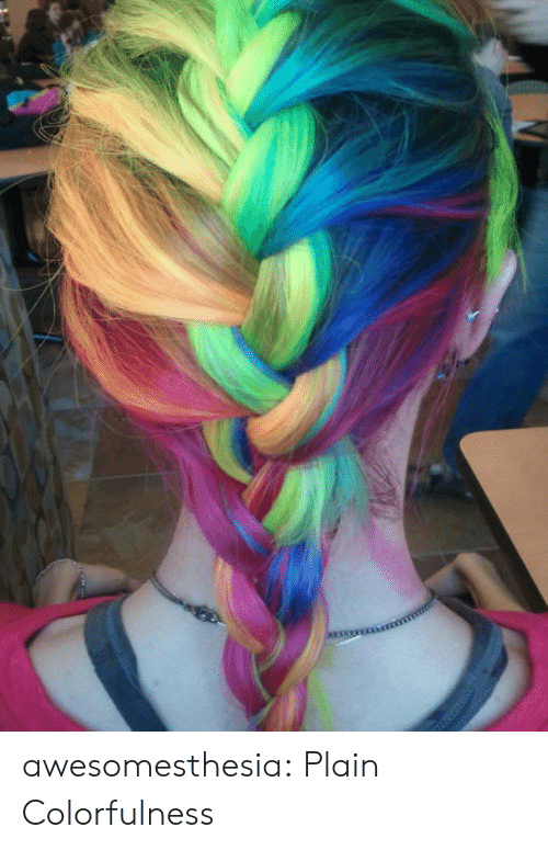 Tumblr, Blog, and Com: awesomesthesia:  Plain Colorfulness