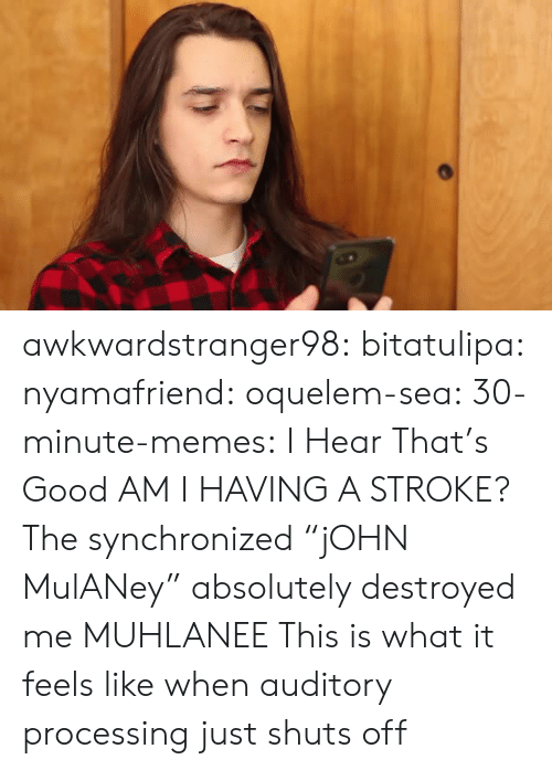 "Memes, Tumblr, and Blog: awkwardstranger98: bitatulipa:  nyamafriend:   oquelem-sea:  30-minute-memes: I Hear That's Good  AM I HAVING A STROKE?  The synchronized ""jOHN MulANey"" absolutely destroyed me   MUHLANEE   This is what it feels like when auditory processing just shuts off"