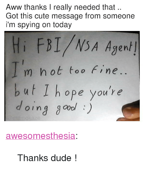 """spying: Aww thanks I really needed that  Got this cute message from someone  i'm spying on today  Hi FBI/NSA Agen/  m hot too Fine  but I hope you're  oing go) <p><a href=""""http://awesomesthesia.tumblr.com/post/173576197324/thanks-dude"""" class=""""tumblr_blog"""">awesomesthesia</a>:</p>  <blockquote><p>Thanks dude !</p></blockquote>"""