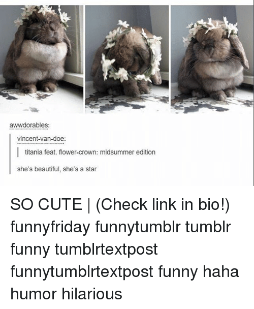 ˜»: awwdorables:  vincent-van-doe:  titania feat. flower-crown: midsummer edition  she's beautiful, she's a star SO CUTE | (Check link in bio!) funnyfriday funnytumblr tumblr funny tumblrtextpost funnytumblrtextpost funny haha humor hilarious