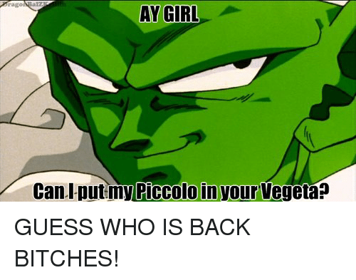 Ay Girl Cani Putmy Piccolo In Your Vegeta Guess Who Is Back Bitches