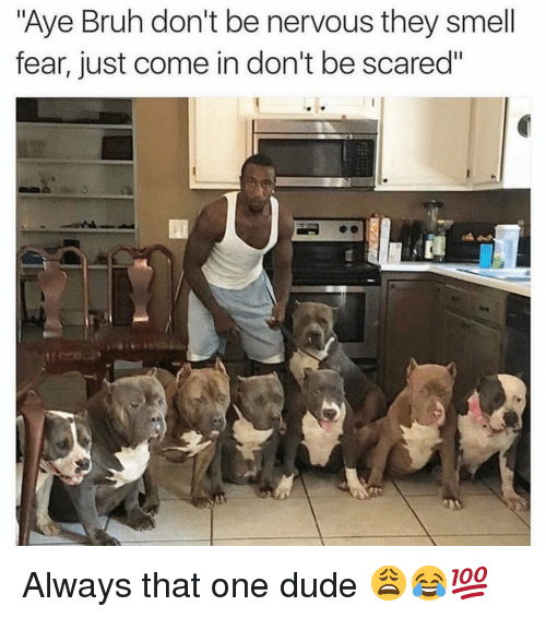 "Bruh, Dude, and Funny: ""Aye Bruh don't be nervous they smell  fear, just come in don't be scared"" Always that one dude 😩😂💯"