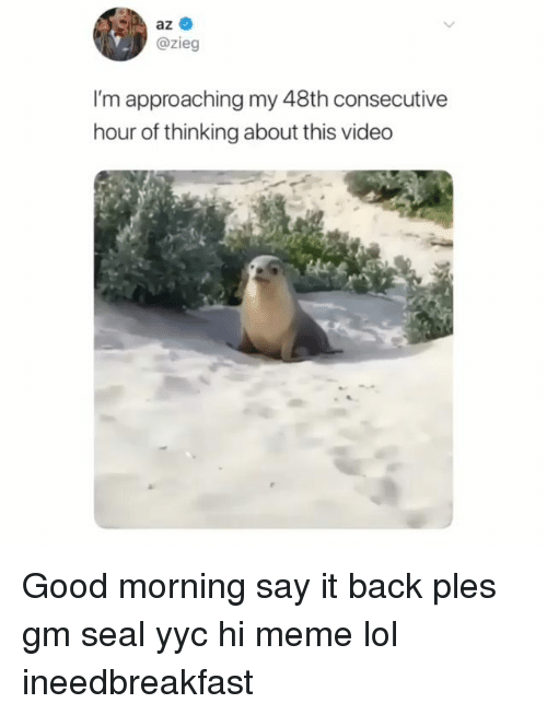 Lol, Meme, and Memes: az  @zieg  I'm approaching my 48th consecutive  hour of thinking about this video Good morning say it back ples gm seal yyc hi meme lol ineedbreakfast