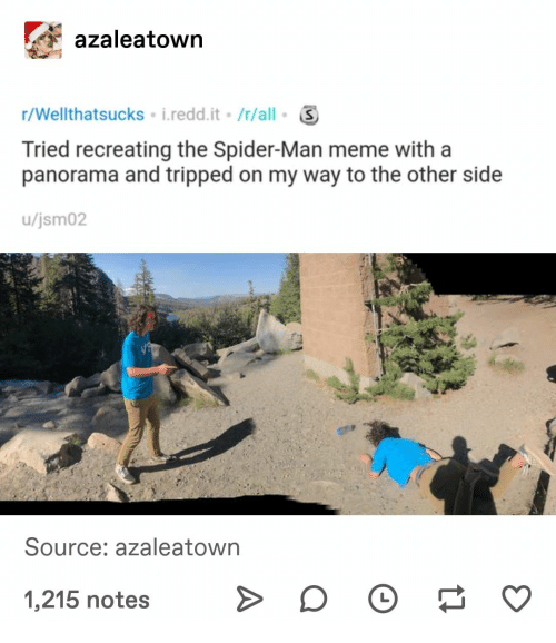 Other Side: azaleatown  r/Wellthatsucks i.redd.it /r/all  Tried recreating the Spider-Man meme with a  panorama and tripped on my way to the other side  /jsm02  Source: azaleatown  1,215 notes