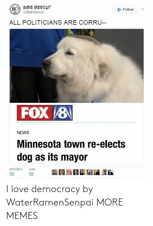 Democracy: Bøis Øpscur  BO  Follow  @BoisObscur  ALL POLITICIANS ARE CORRU--  FOX 8  NEWS  Minnesota town re-elects  dog as its mayor  LIKES  RETWEETS  32  32 I love democracy by WaterRamenSenpai MORE MEMES