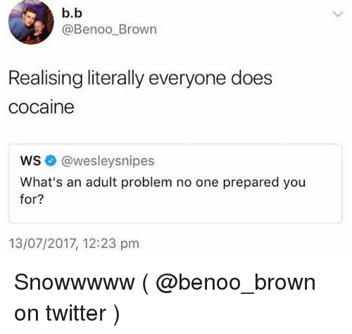 Memes, Twitter, and Cocaine: b.b  @Benoo_Brown  Realising literally everyone does  cocaine  ws @wesleysnipes  What's an adult problem no one prepared you  for?  for?  13/07/2017, 12:23 pm Snowwwww ( @benoo_brown on twitter )