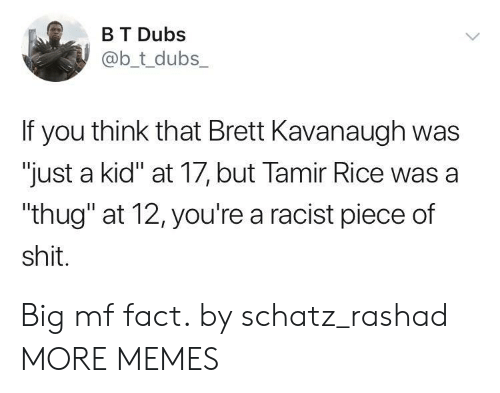 "Dank, Memes, and Shit: B T Dubs  @b_t_dubs  If you think that Brett Kavanaugh was  ""just a kid"" at 17, but Tamir Rice was a  ""thug"" at 12, you're a racist piece of  shit. Big mf fact. by schatz_rashad MORE MEMES"