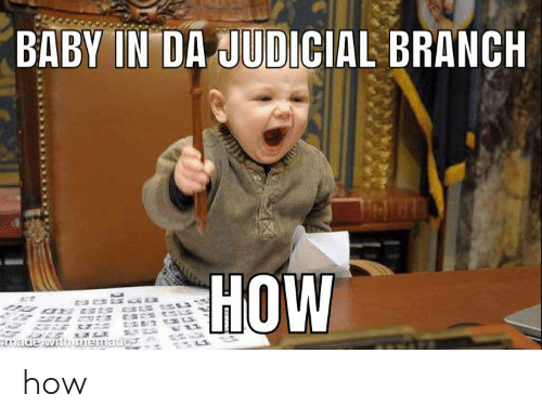 judicial branch: BABY IN DA JUDICIAL BRANCH  HOW  made with mematic how
