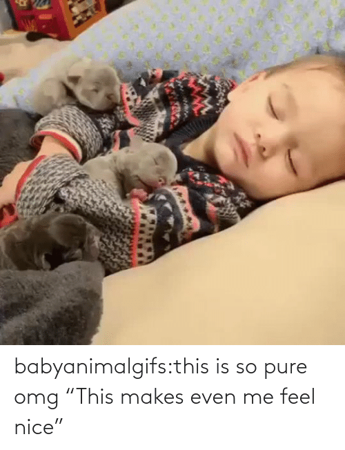 "feel: babyanimalgifs:this is so pure omg   ""This makes even me feel nice"""
