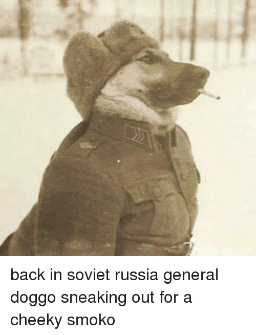 in soviet russia: back in soviet russia general doggo sneaking out for a cheeky smoko