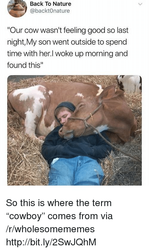 "Good, Http, and Nature: Back To Nature  @backtOnature  Our cow wasn't feeling good so last  night,My son went outside to spend  time with her.l woke up morning and  found this So this is where the term ""cowboy"" comes from via /r/wholesomememes http://bit.ly/2SwJQhM"