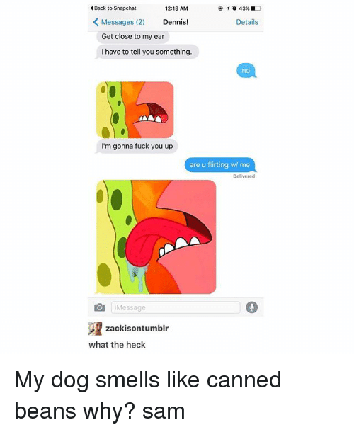 Fuck You, Memes, and Snapchat: Back to Snapchat  12:18 AM  43%  K Messages (2)  Dennis!  Details  Get close to my ear  I have to tell you something.  nAAA  I'm gonna fuck you up  are u flirting w/ me  Delivered  Message  22 zackisontumblr  what the heck My dog smells like canned beans why? ≪sam≫