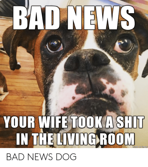 Bad News: BAD NEWS  YOUR WIFE TOOK A SHIT  IN THE LIVING ROOM BAD NEWS DOG