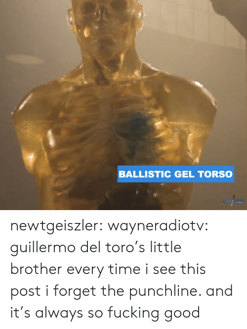Fucking, Tumblr, and Blog: BALLISTIC GEL TORSO newtgeiszler: wayneradiotv: guillermo del toro's little brother every time i see this post i forget the punchline. and it's always so fucking good