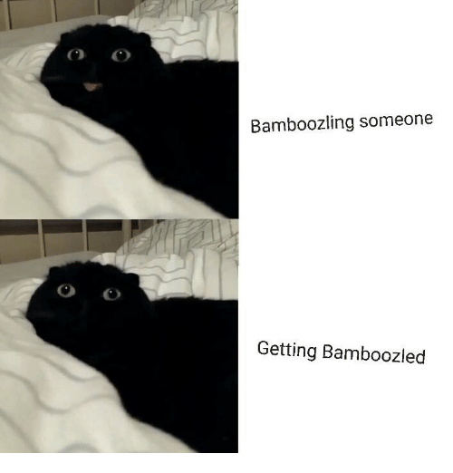 Memes, 🤖, and Bamboozle: Bamboozling someone  Getting Bamboozled
