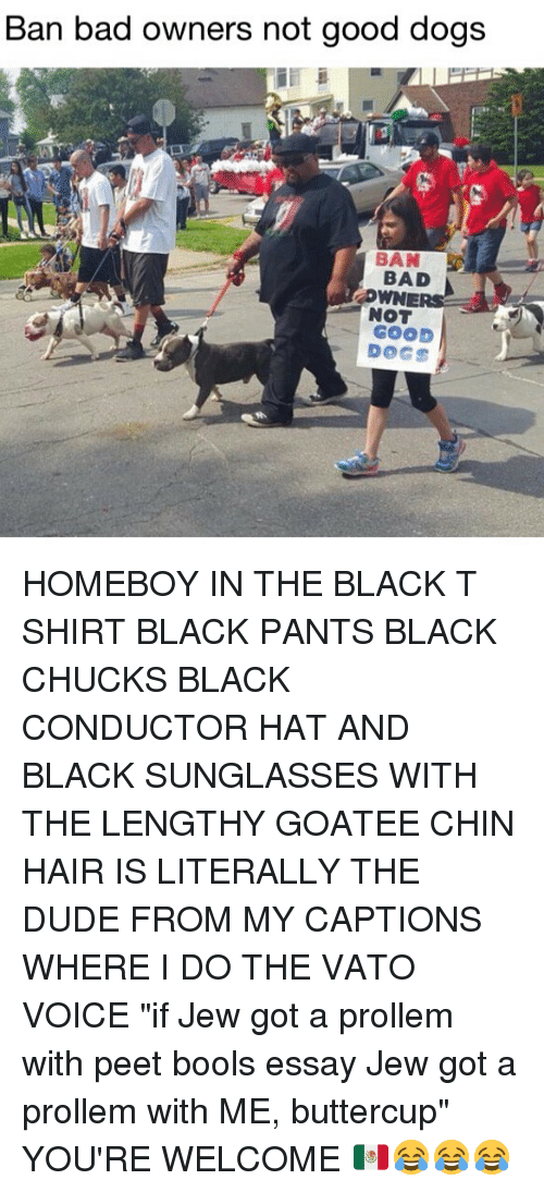 "Bad, Dogs, and Dude: Ban bad owners not good dogs  BAD  NOT  GOOD  DOGS HOMEBOY IN THE BLACK T SHIRT BLACK PANTS BLACK CHUCKS BLACK CONDUCTOR HAT AND BLACK SUNGLASSES WITH THE LENGTHY GOATEE CHIN HAIR IS LITERALLY THE DUDE FROM MY CAPTIONS WHERE I DO THE VATO VOICE ""if Jew got a prollem with peet bools essay Jew got a prollem with ME, buttercup"" YOU'RE WELCOME 🇲🇽😂😂😂"