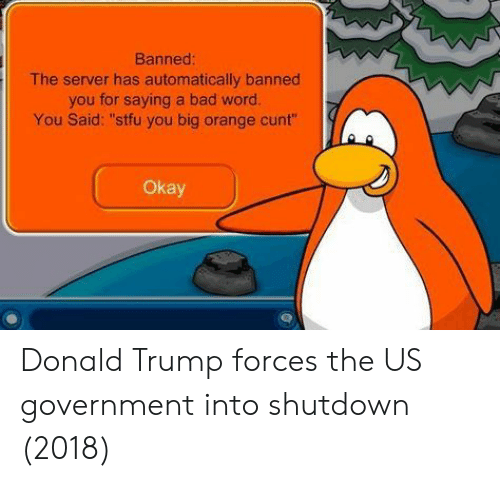 """Bad, Donald Trump, and Cunt: Banned  The server has automatically banned  you for saying a bad word.  You Said: """"stfu you big orange cunt""""  Okay Donald Trump forces the US government into shutdown (2018)"""