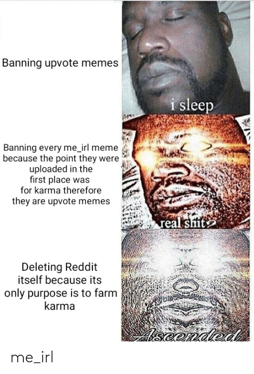 Irl Meme: Banning upvote memes  i sleep  Banning every me_irl meme  because the point they were  uploaded in the  first place was  for karma therefore  they are upvote memes  real sitite  Deleting Reddit  itself because its  only purpose is to farm  karma  Aseended me_irl