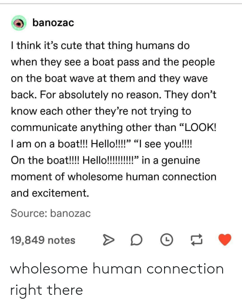 """Cute, Hello, and Wholesome: banozac  l think it's cute that thing humans do  When they see a boat pass and tne people  on the boat wave at them and they wave  back. For absolutely no reason. They don't  know each other they're not trying to  communicate anything other than """"LOOK!  I am on a boat!! Hello!!!!"""" """"I see you!!!!  29 CG  moment of wholesome human connection  and excitement.  Source: banozac  19,849 notesD wholesome human connection right there"""