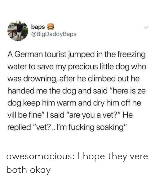 "Tourist: baps  @BigDaddyBaps  A German tourist jumped in the freezing  water to save my precious little dog who  was drowning, after he climbed out he  handed me the dog and said ""here is ze  dog keep him warm and dry him off he  vill be fine"" I said ""are you a vet?"" He  replied ""vet?.. I'm fucking soaking"" awesomacious:  I hope they vere both okay"