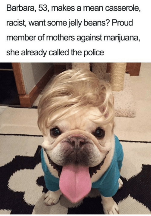 Police, Marijuana, and Mean: Barbara, 53, makes a mean casserole,  racist, want some jelly beans? Proud  member of mothers against marijuana,  she already called the police