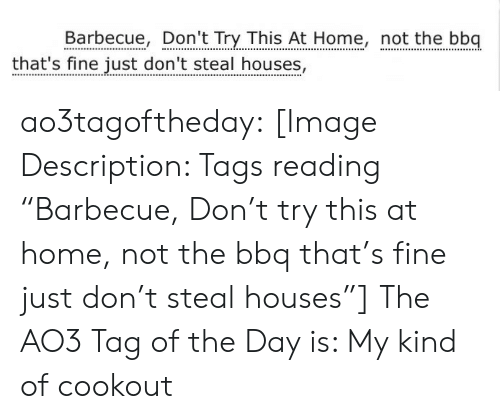 "Target, Tumblr, and Blog: Barbecue, Don't Try This At Home, not the bbq  that's fine just don't steal houses, ao3tagoftheday:  [Image Description: Tags reading ""Barbecue, Don't try this at home, not the bbq that's fine just don't steal houses""]  The AO3 Tag of the Day is: My kind of cookout"