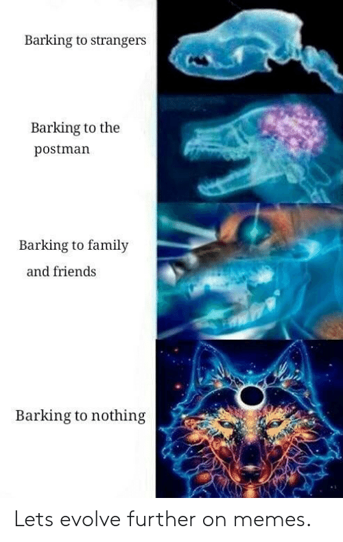 Family, Friends, and Memes: Barking to strangers  Barking to the  postman  Barking to family  and friends  Barking to nothing Lets evolve further on memes.