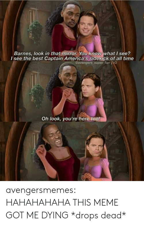 Meme, Target, and Tumblr: Barnes, look in that mirror. You know what I see?  l see the best Captain America's sidekick of all time  Gavengers super fan IIG  Oh look, you're here too! avengersmemes:  HAHAHAHAHA THIS MEME GOT ME DYING *drops dead*