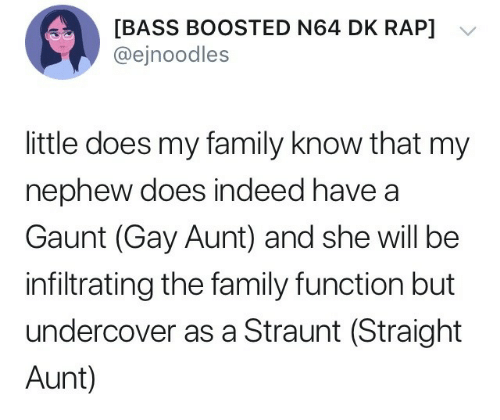 n64: [BASS BOOSTED N64 DK RAP]  @ejnoodles  little does my family know that my  nephew does indeed have a  Gaunt (Gay Aunt) and she will be  infiltrating the family function but  undercover as a Straunt (Straight  Aunt)