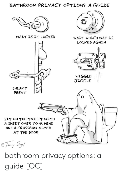 Head, Crossbow, and Options: BATHROOM PRIVACY OPTIONS: A GULDE  WAIT IS IT LOCKED  WAIT WHLCH WAY IS  LOCKED AGAIN  WIGGLEII  JIGGLE  SNEAKY  PEEKY  SLT ON THE TOLLET WLTH  A SHEET OVER YOUR HEAD  AND A CROSSBOW ALMED  AT THE DOOR  Sieg  Onim bathroom privacy options: a guide [OC]