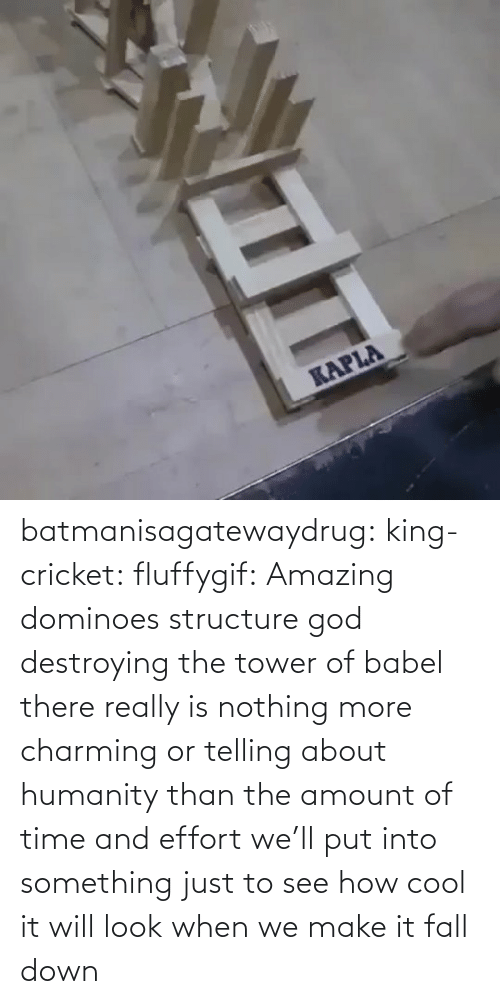 Humanity: batmanisagatewaydrug: king-cricket:  fluffygif:  Amazing dominoes structure    god destroying the tower of babel  there really is nothing more charming or telling about humanity than the amount of time and effort we'll put into something just to see how cool it will look when we make it fall down