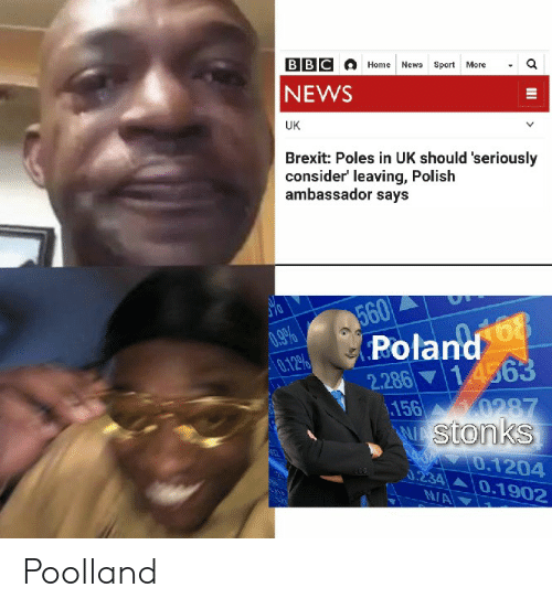 News, Home, and Dank Memes: BBC  a  Home News Sport  More  NEWS  UK  Brexit: Poles in UK should 'seriously  consider' leaving, Polish  ambassador says  560  Poland  2.286 14563  156 0287  W stonks  .9%  0.12%  0.1204  0.234 0.1902  NA  II Poolland