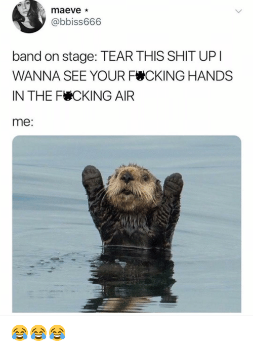 Fucking, Memes, and Shit: @bbiss666  band on stage: TEAR THIS SHIT UP  WANNA SEE YOUR FCKING HANDS  IN THE FUCKING AIR  me 😂😂😂