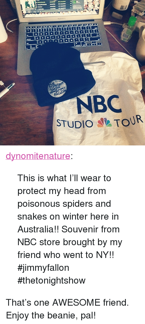 """Head, Target, and Tumblr: BC  STUDIO TOUR <p><a class=""""tumblr_blog"""" href=""""http://dynomitenature.tumblr.com/post/84108627174/this-is-what-ill-wear-to-protect-my-head-from"""" target=""""_blank"""">dynomitenature</a>:</p> <blockquote> <p>This is what I'll wear to protect my head from poisonous spiders and snakes on winter here in Australia!! Souvenir from NBC store brought by my friend who went to NY!! #jimmyfallon #thetonightshow</p> </blockquote> <p>That&rsquo;s one AWESOME friend. Enjoy the beanie, pal!</p>"""