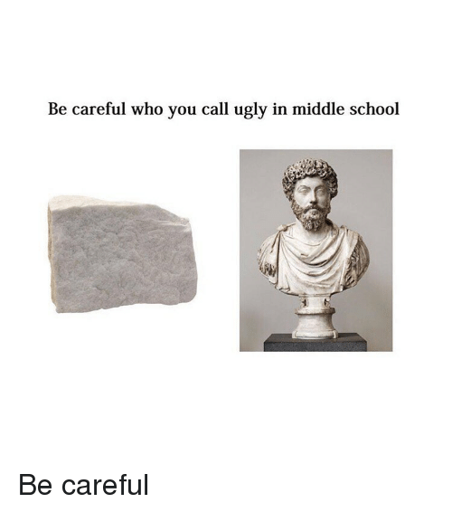 School, Ugly, and Classical Art: Be careful who you call ugly in middle school Be careful
