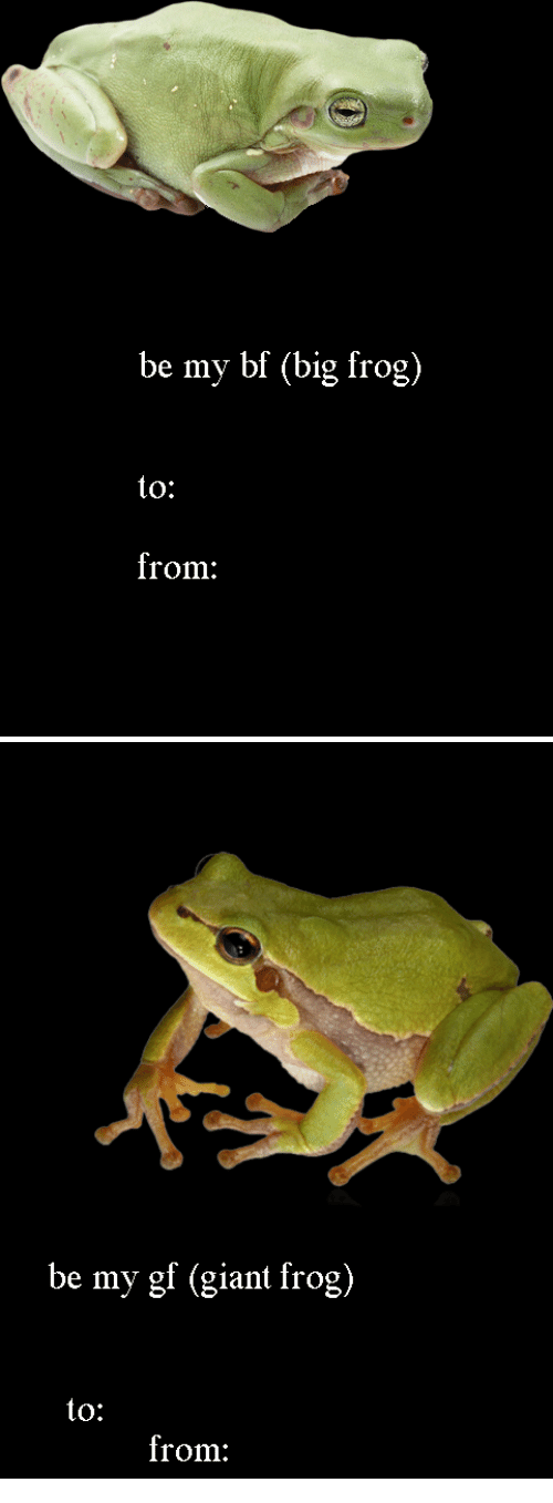 Be My Gf: be my bf (big frog)  to:  from:   be my gf (giant frog)  to:  from: