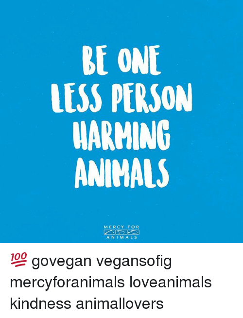 animism: BE ONE  LESS PERSON  WARMING  ANIMALS  MERCY FOR  ANIM ALS 💯 govegan vegansofig mercyforanimals loveanimals kindness animallovers