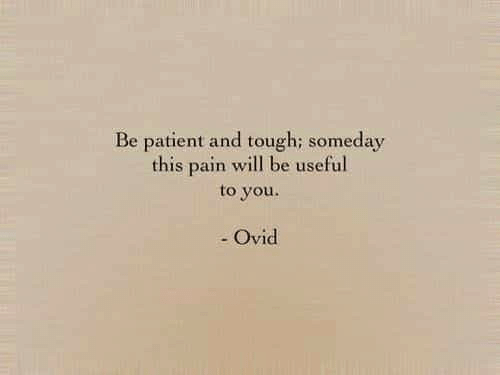 Patient, Tough, and Pain: Be patient and tough; someday  this pain will be useful  to you.  - Ovid