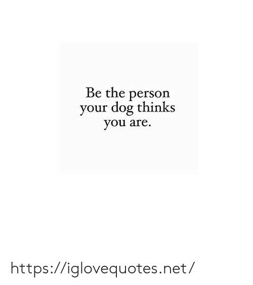 Net, Dog, and You: Be the person  your dog thinks  you are. https://iglovequotes.net/