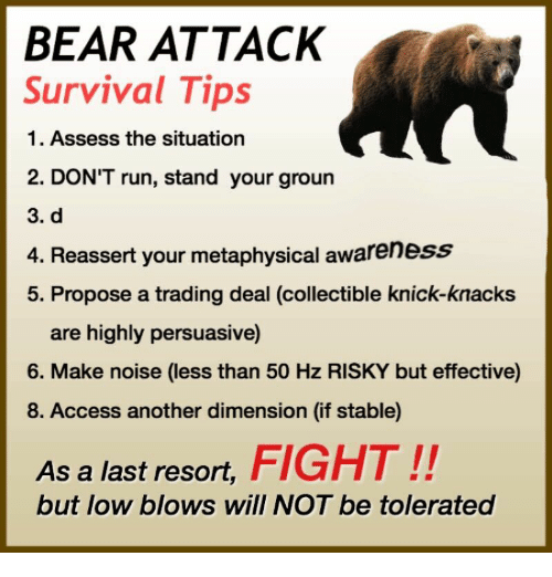 Run, Access, and Bear: BEAR ATTACK  Survival Tips  1. Assess the situation  2. DON'T run, stand your groun  3. d  4. Reassert your metaphysical awareness  5. Propose a trading deal (collectible knick-knacks  are highly persuasive)  6. Make noise (less than 50 Hz RISKY but effective)  8. Access another dimension (if stable)  As a last resort, FIGHT!!  but low blows will NOT be tolerated