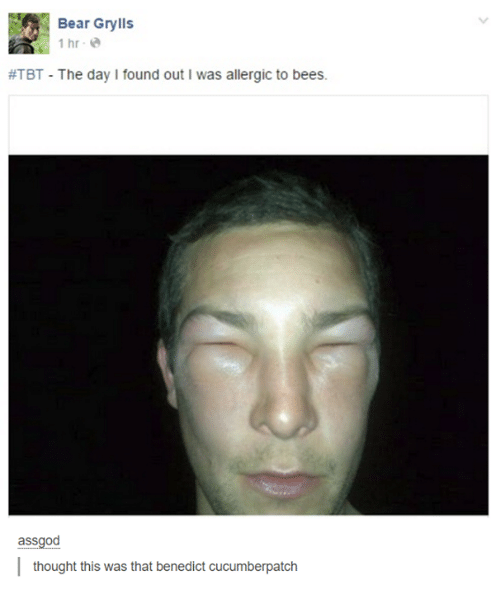 Tbt, Bear, and Humans of Tumblr: Bear Grylls  1 hr e  #TBT-The day I found out I was allergic to bees.  assgod  thought this was that benedict cucumberpatch