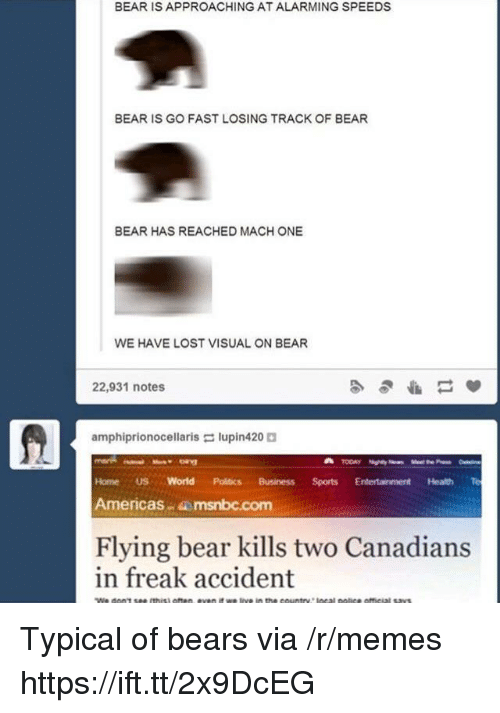 Memes, Politics, and Lost: BEAR IS APPROACHING AT ALARMING SPEEDS  BEAR IS GO FAST LOSING TRACK OF BEAR  BEAR HAS REACHED MACH ONE  WE HAVE LOST VISUAL ON BEAR  22,931 notes  amphiprionocellaris lupin420  Home US World Politics BusinessSports Entertainment Health Te  Americas msnbc.com  Flying bear kills two Canadians  in freak accident Typical of bears via /r/memes https://ift.tt/2x9DcEG