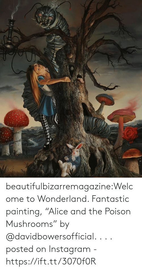 "poison: beautifulbizarremagazine:Welcome to Wonderland. Fantastic painting, ""Alice and the Poison Mushrooms"" by @davidbowersofficial.⁣ .⁣ .⁣ .⁣         posted on Instagram - https://ift.tt/3070f0R"
