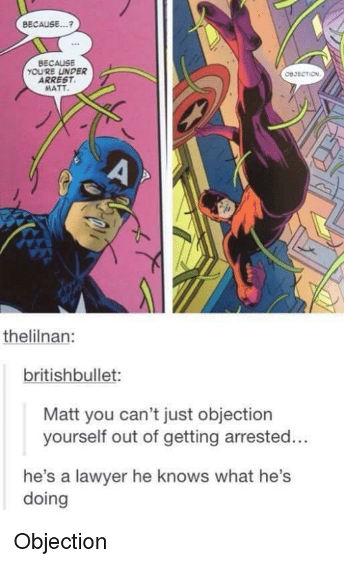 Lawyer, Tumblr, and You: BECAUSE...?  BECAUSE  YOURE UNDER  ARREST,  MATT  thelilnan  britishbullet  Matt you can't just objection  yourself out of getting arrested...  he's a lawyer he knows what he's  doing