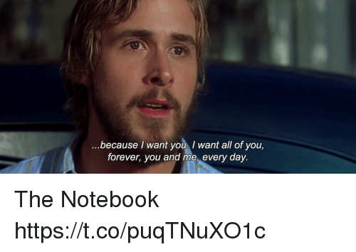 Memes, Notebook, and Forever: because I want youI want all of you,  forever, you and me, every day. The Notebook https://t.co/puqTNuXO1c