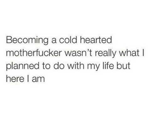 here i am: Becoming a cold hearted  motherfucker wasn't really what l  planned to do with my life but  here I am