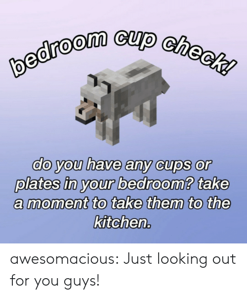 Tumblr, Blog, and Looking: bedroom cup check!  do you have any cups or  plates in your bedroom? take  moment to take them to the  kitchen. awesomacious:  Just looking out for you guys!