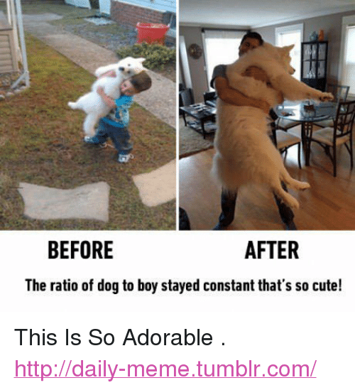 "The Ratio: BEFORE  AFTER  The ratio of dog to boy stayed constant that's so cute! <p>This Is So Adorable .<br/><a href=""http://daily-meme.tumblr.com""><span style=""color: #0000cd;""><a href=""http://daily-meme.tumblr.com/"">http://daily-meme.tumblr.com/</a></span></a></p>"